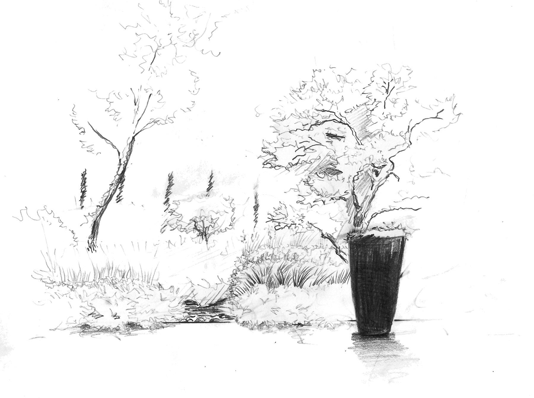 Croquis jardin design Parc-Saint-Tropez Olivia Bochet