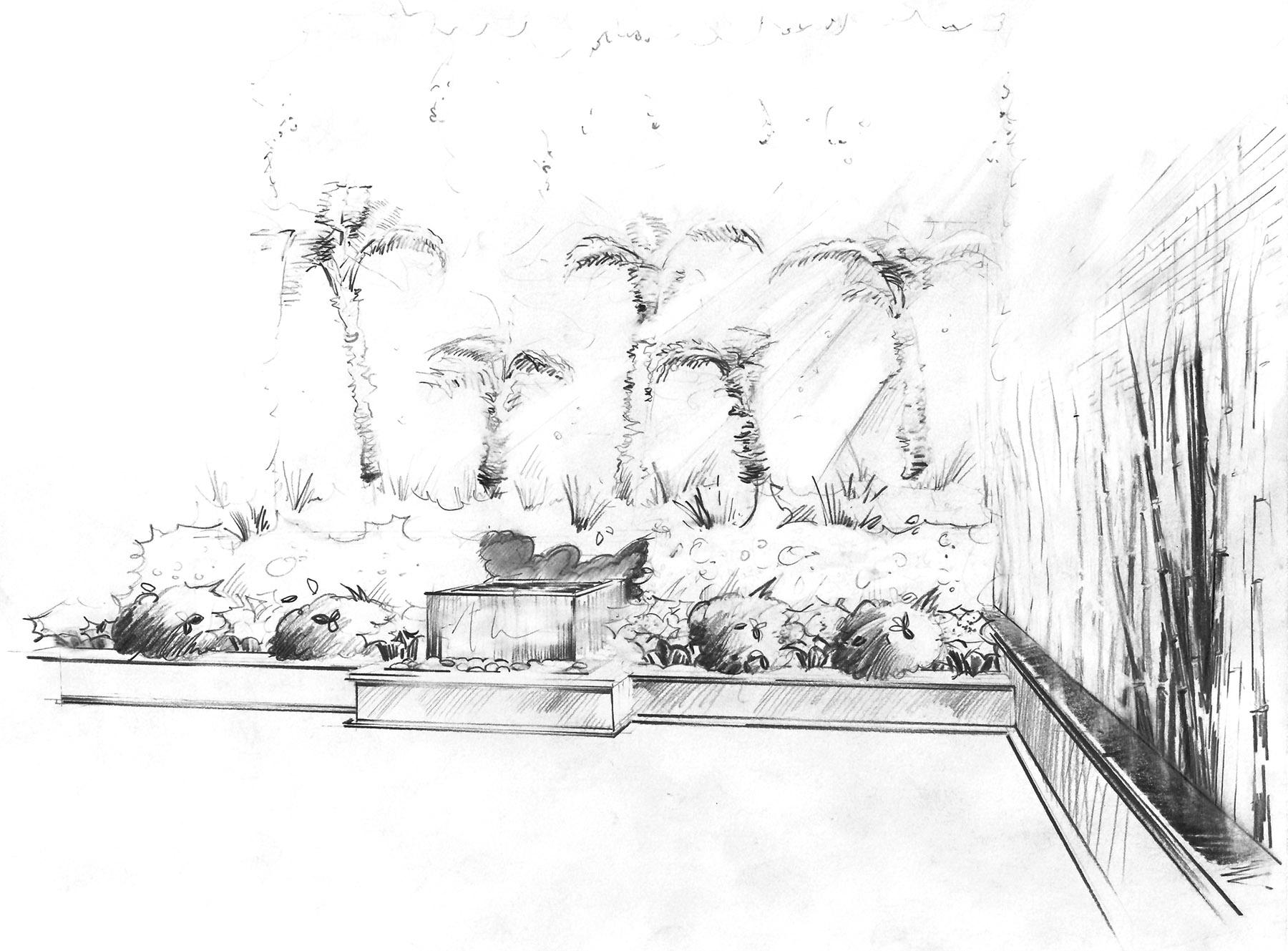 Croquis jardin exotique paysagiste Paris Olivia Bochet