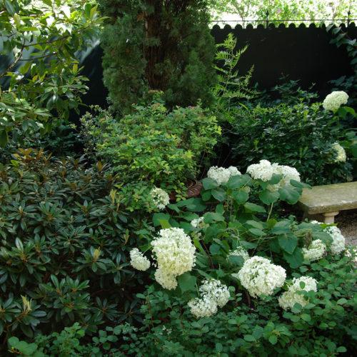 Jardin anglais paysagiste Neuilly Olivia Bochet