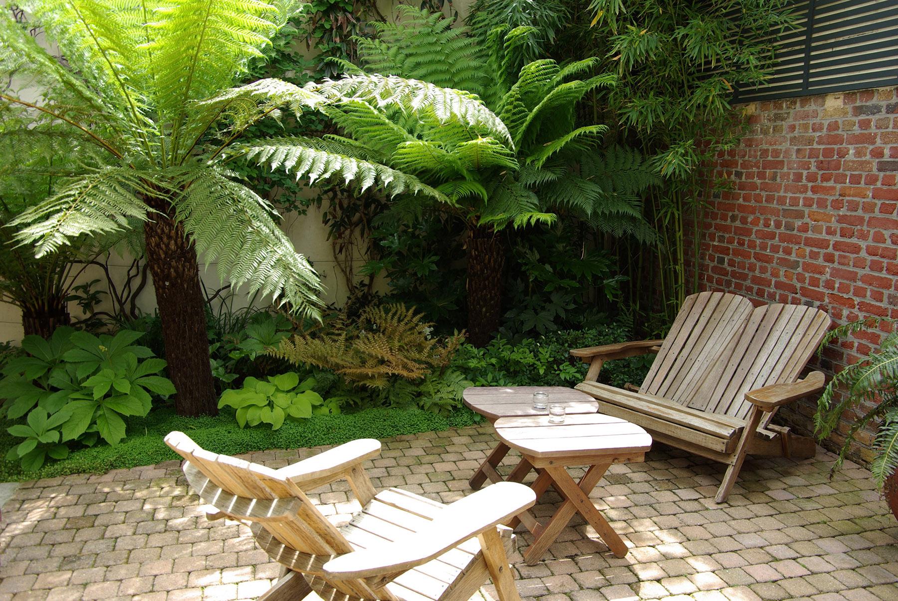 Jardin exotique design paysagiste Paris Olivia Bochet