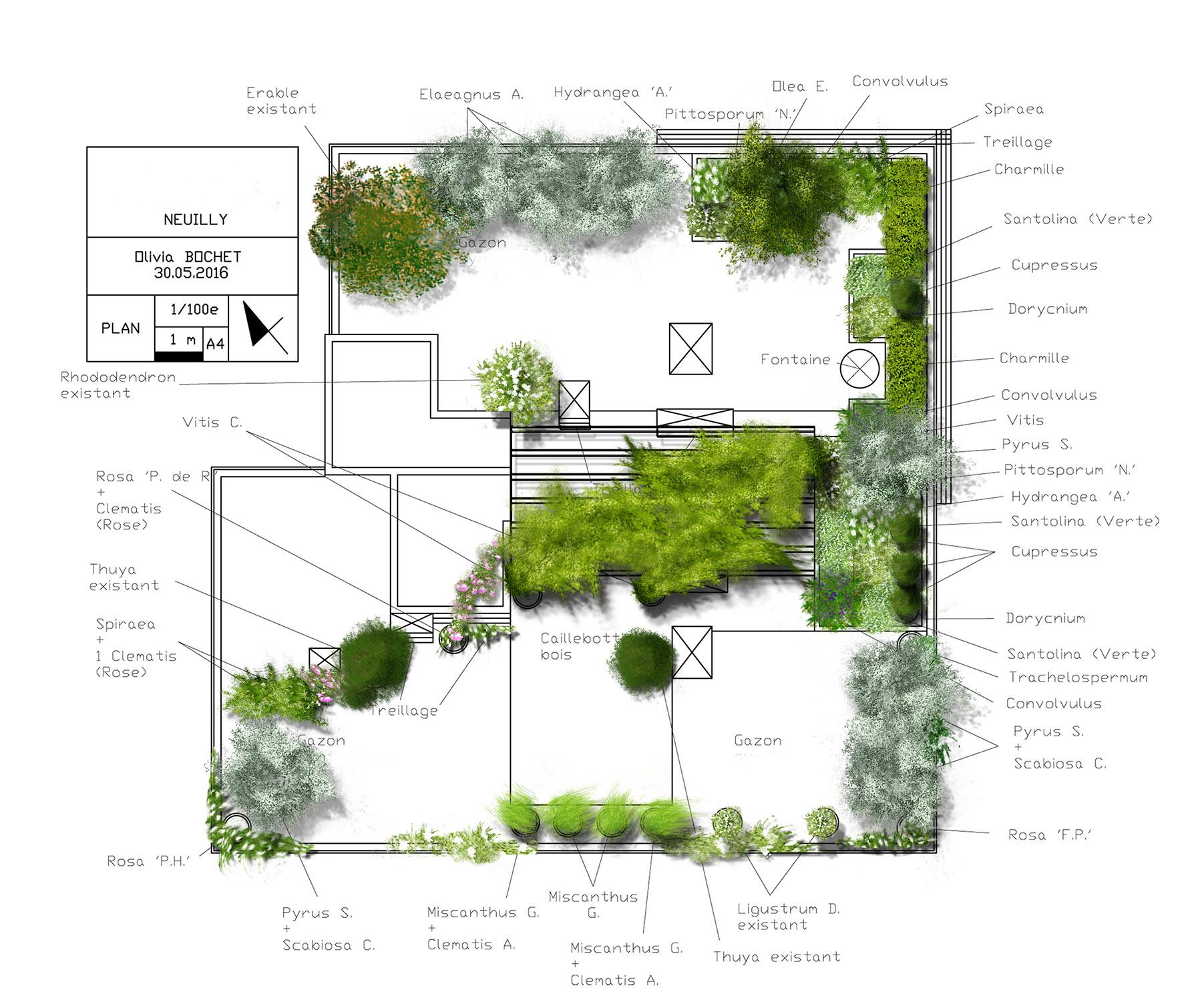 Plan terrasse prestige paysagiste Olivia Bochet